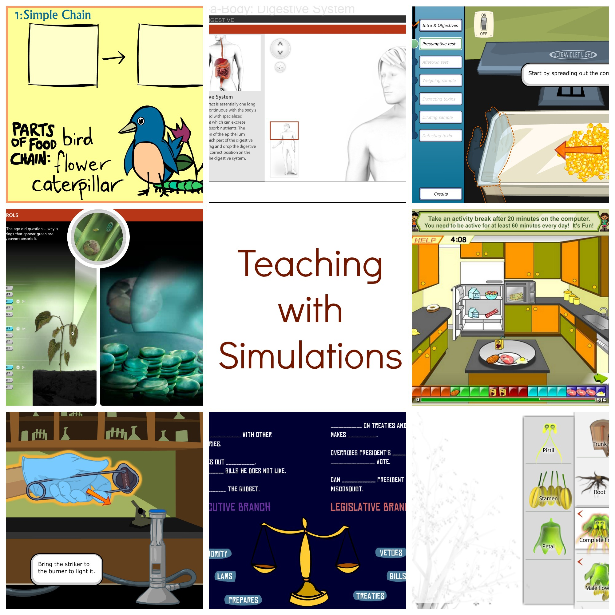 Teaching Strategies for Interactive Simulations