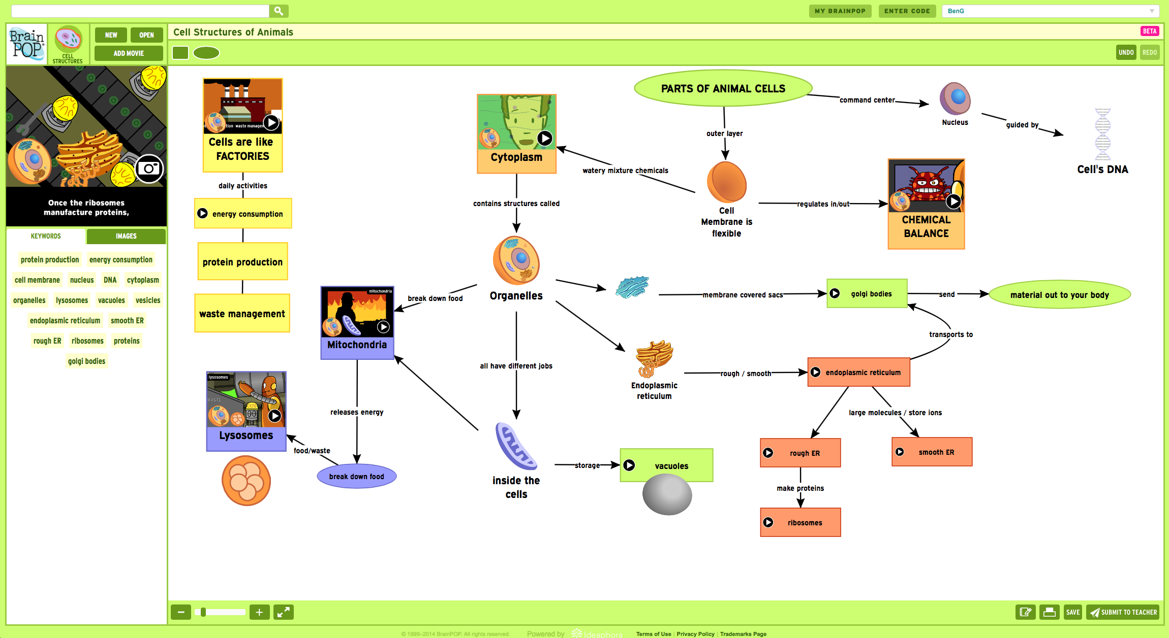 Cell Structures concept map created with Make-a-Map!