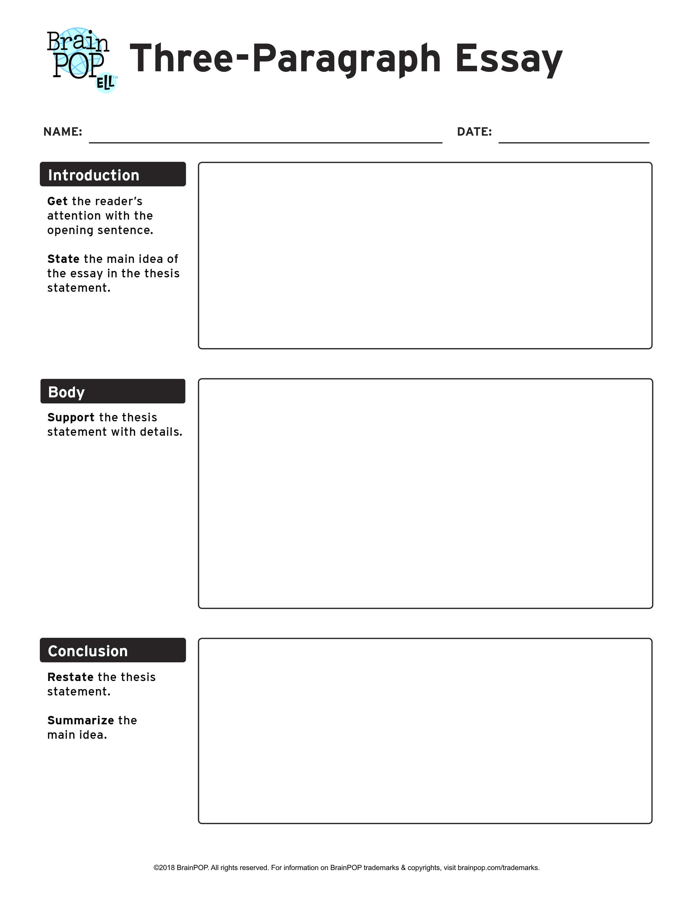 Three Paragraph Essay Graphic Organizer