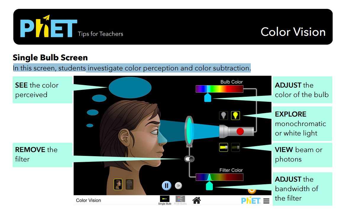 Color Vision Simulation Overview for Teachers