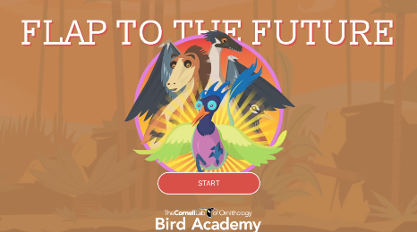 Flap to the Future Preview