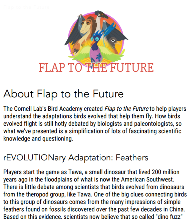About Flap to the Future
