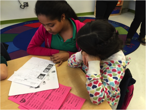 Integration of FYIs into a Dual Language Classroom