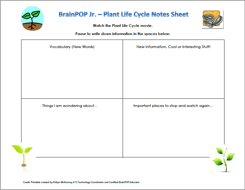 Plant Life Cycle Note-Taking Sheet